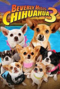 Beverly Hills Chihuahua 3 Viva La Fiesta (2012) คุณหมาไฮโซ โกบ้านนอก ภาค 3